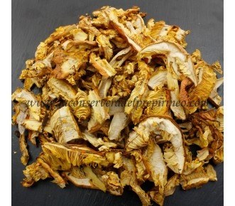 Amanita Caesarea Seta Deshidratada Vegetal 100%